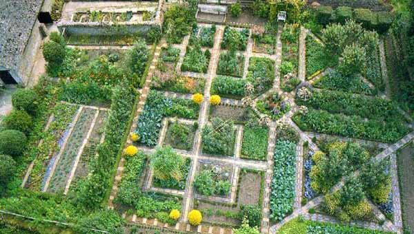 Дизайн садового участка в картинках. Обсуждение на…