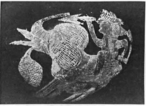 Загадка камней Ики: научная сенсация или мистификация?