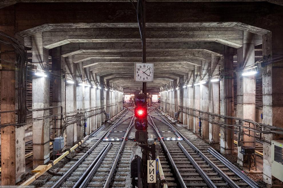 розы группа фото туннелей метро москвы некоторых регионах
