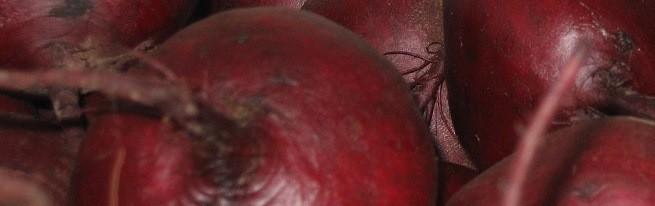 Полезные свойства свеклы для организма человека