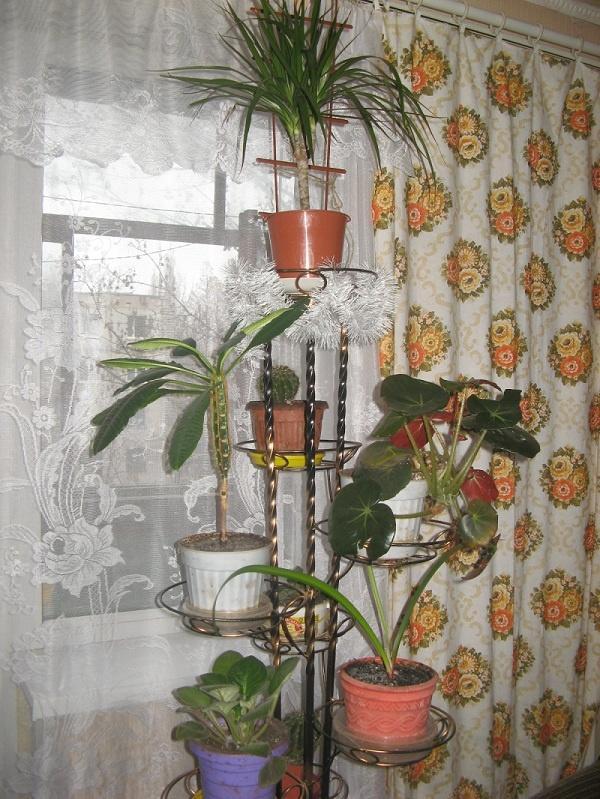 Подставки для цветов в интерьере квартиры фото