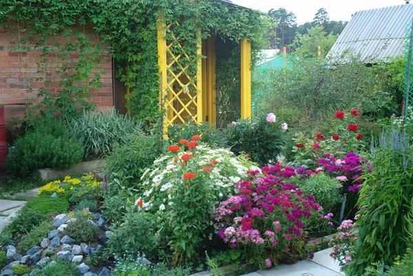 Фото цветочных клумб своими руками на даче